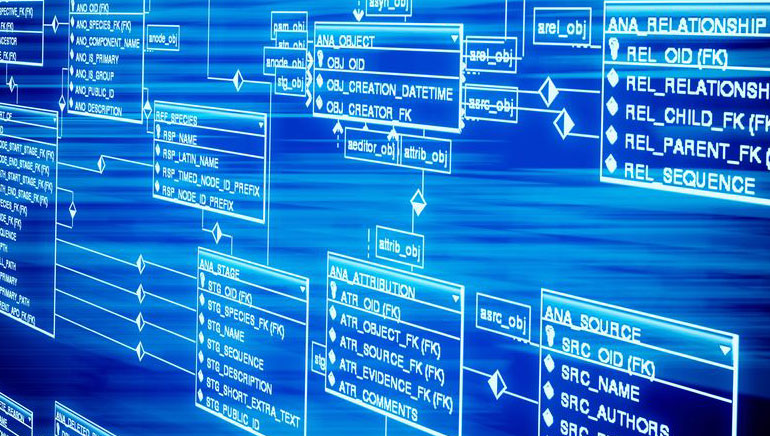Oprogramowanie Kasyna Online